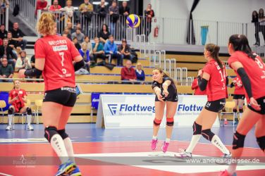 161217-volleyball-vib-dresden-11-8024