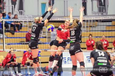 161217-volleyball-vib-dresden-14-8089