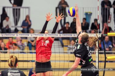 161217-volleyball-vib-dresden-15-8095