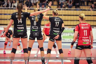 161217-volleyball-vib-dresden-16-8102