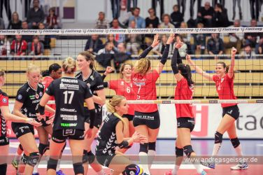 161217-volleyball-vib-dresden-17-8124