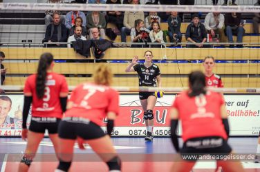 161217-volleyball-vib-dresden-21-8171
