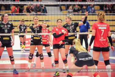 161217-volleyball-vib-dresden-23-8182