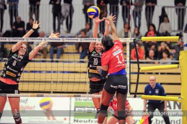 161217-volleyball-vib-dresden-24-8215