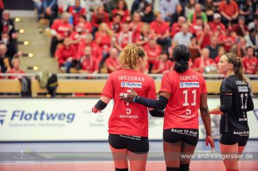 161217-volleyball-vib-dresden-27-8251