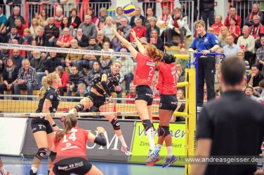 161217-volleyball-vib-dresden-28-8260