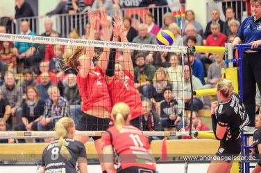 161217-volleyball-vib-dresden-31-8313