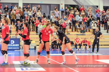 161217-volleyball-vib-dresden-33-8371