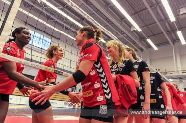 161217-volleyball-vib-dresden-41-0890