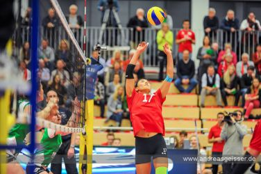 170131-Volleyball-VIB-Münster-20-0674