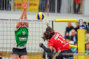 170131-Volleyball-VIB-Münster-23-0196