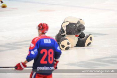 170219-Eishockey-Selb-Landshut-01-1515