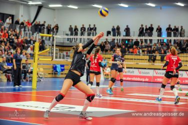 170301-Volleyball-VIB-Wiesbaden-24-2642