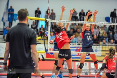 170301-Volleyball-VIB-Wiesbaden-31-2681
