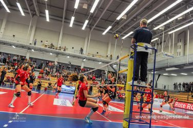 170322-Volleyball-VIB-Dresden-03-3242