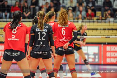 170322-Volleyball-VIB-Dresden-05-3054