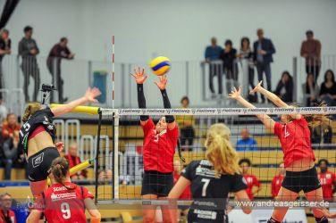 170322-Volleyball-VIB-Dresden-10-3094