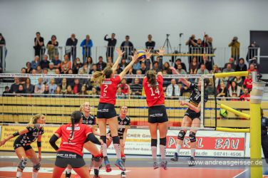 170322-Volleyball-VIB-Dresden-15-3170