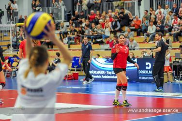 170322-Volleyball-VIB-Dresden-16-3184