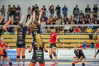 170322-Volleyball-VIB-Dresden-23-3263
