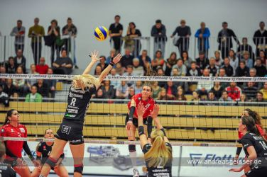170322-Volleyball-VIB-Dresden-25-3303