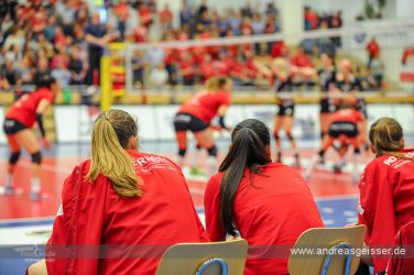 170322-Volleyball-VIB-Dresden-28-3373