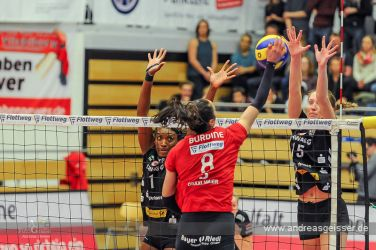 170322-Volleyball-VIB-Dresden-33-3474